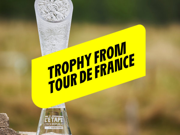 Authentic trophy for the winner